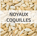 combustible-noyaux-coquilles