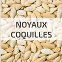 chauffage à la biomasse noyaux coquilles